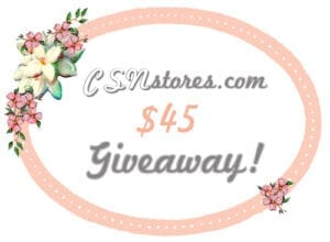 ♥CSN Stores.com $45 Giveaway!♥ CLOSED!