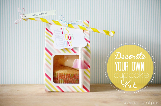 Decorate a Cupcake Kit 061
