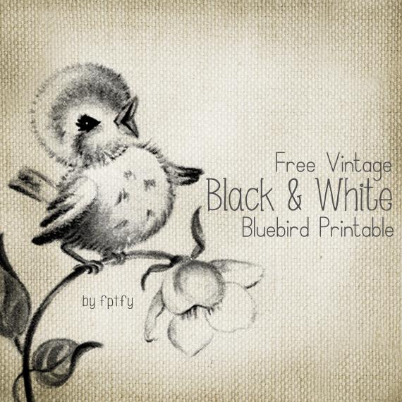 BlueBird_Transfer_FPTFY_webex