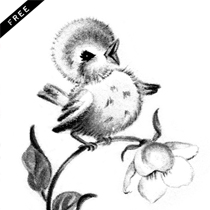 BlueBird_Transfer_FPTFY_webex2