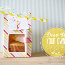 Decorate-a-Cupcake-Kit-061