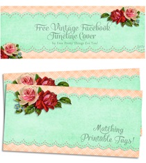 Free-vintage-Facebook-timeline-cover-by-FPTFY-2b
