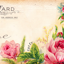 Free Romantic Vintage Rose Web Banner