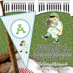 A-Z Alphabet & Number Baseball Boy Bunting Banner Part 2