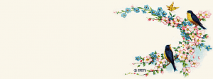 free-facebooktimelinecover-vintage-bluebirds-byFPTFY-A