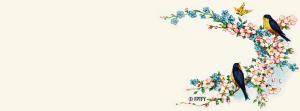 free-facebooktimelinecover-vintage-bluebirds-byFPTFY-A