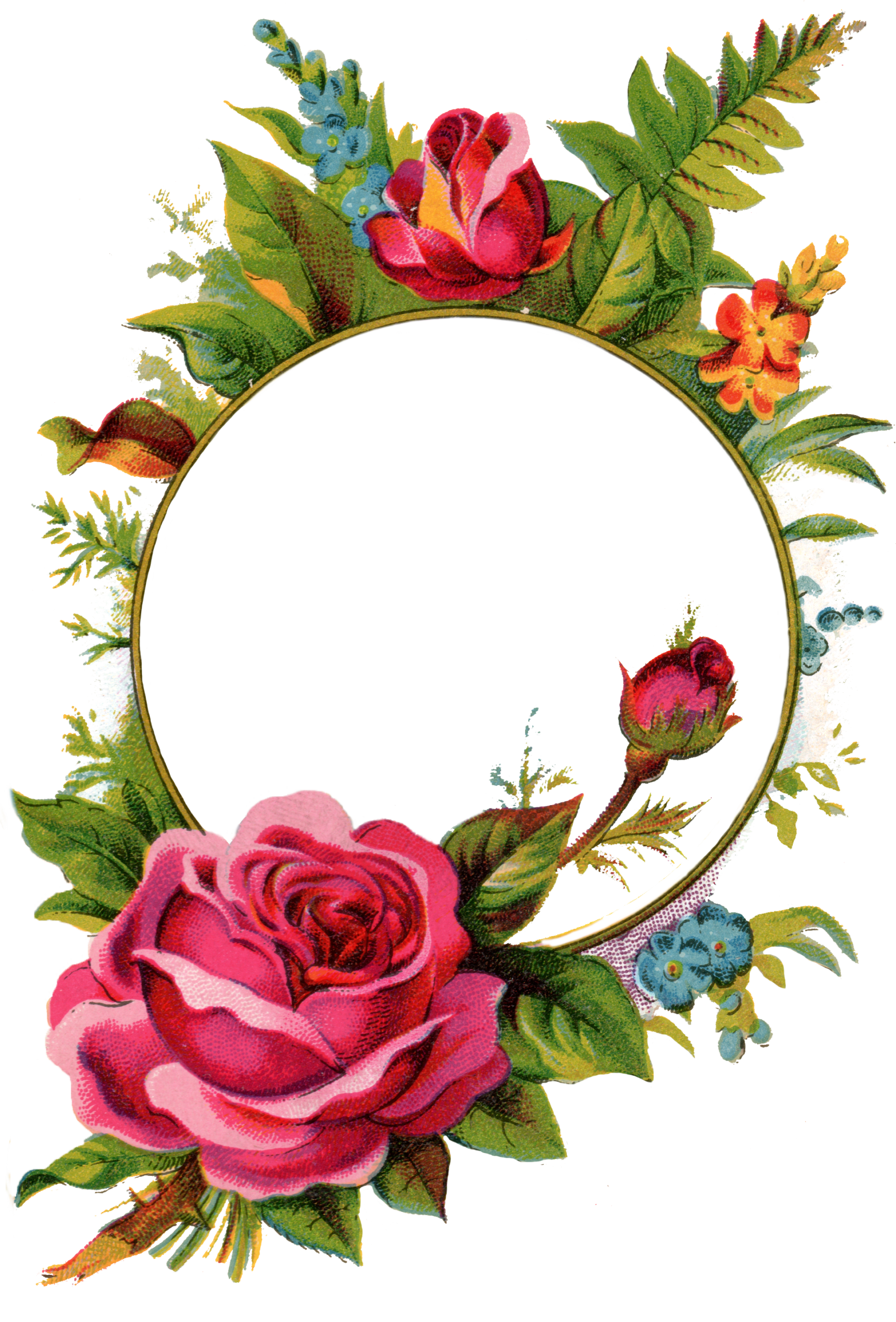 Free Stock Images-Rose Frame - Free Pretty Things For You