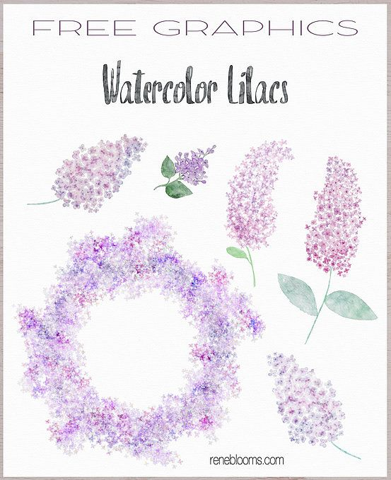 9-free-watercolor-flowers-reneblooms