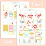 Blossom-Delight-FPTFY-600-b