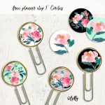diy-planner-clips-pretty-2