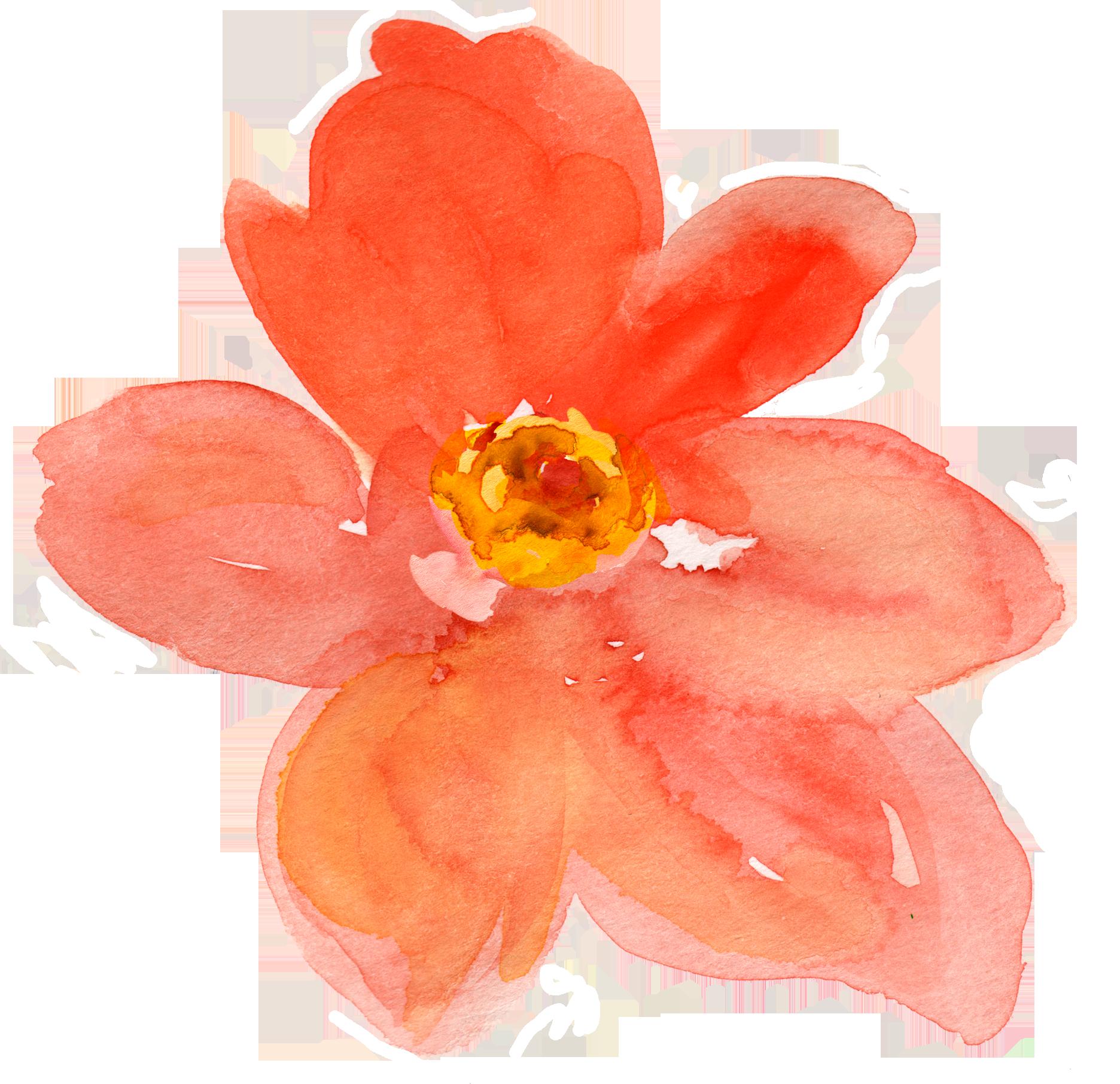 Free Fall Watercolor Floral Clip Art So Pretty Free