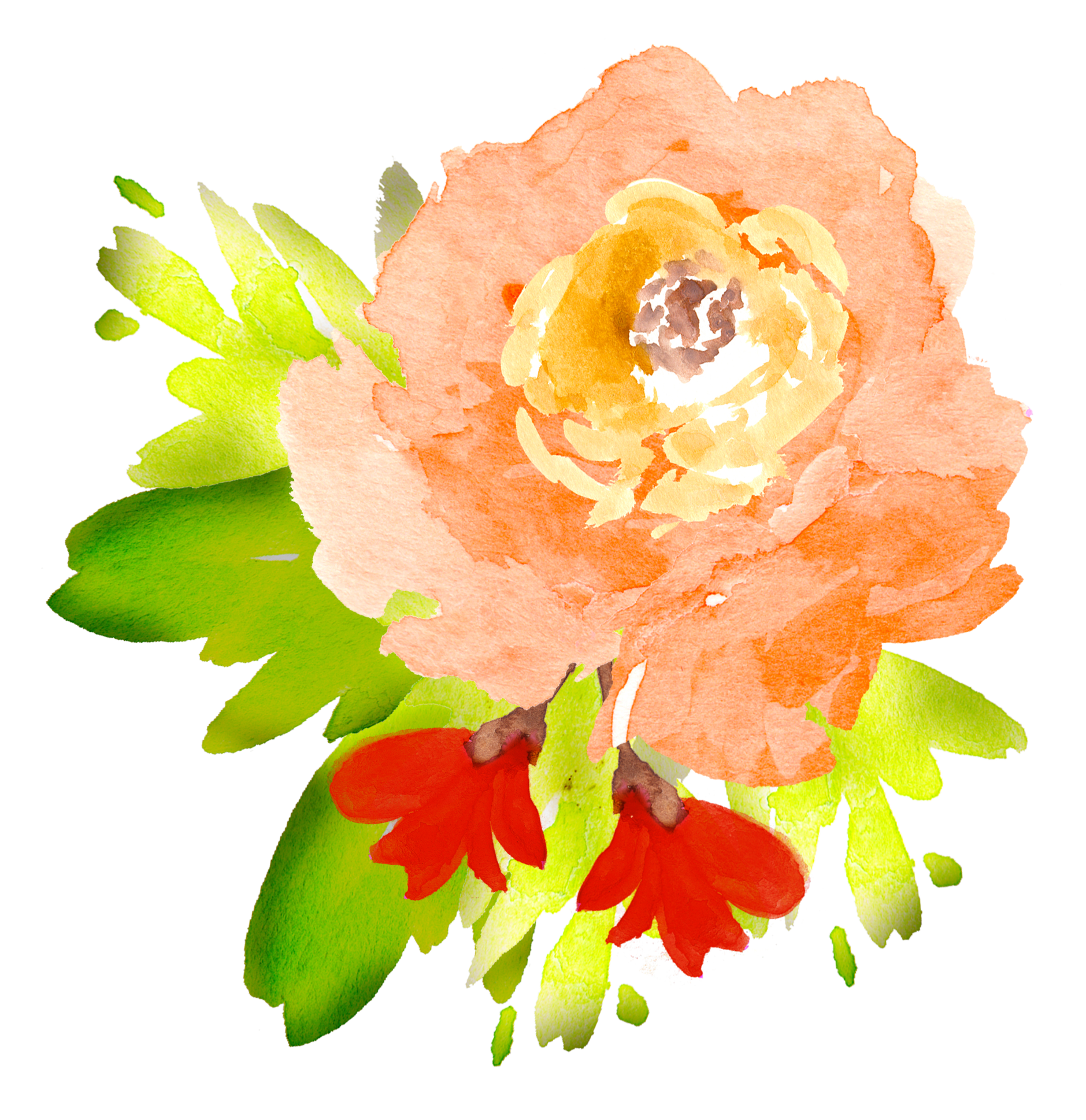 free watercolor floral elements pretty free pretty things for you