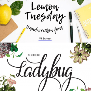 Free Script and Brush Fonts!