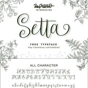 Free Font: Setta Script Typeface- Pretty!