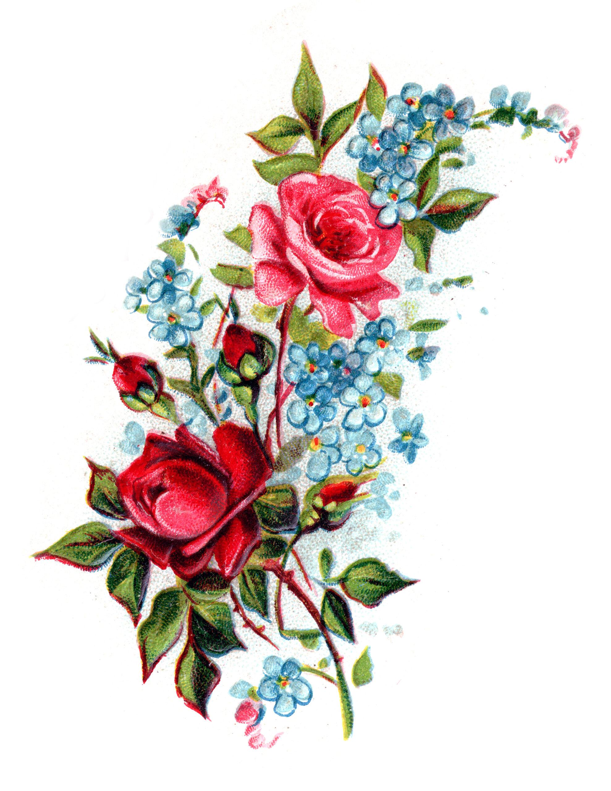Royalty Free Romantic Vintage Rose Bouquet - Free Pretty ...