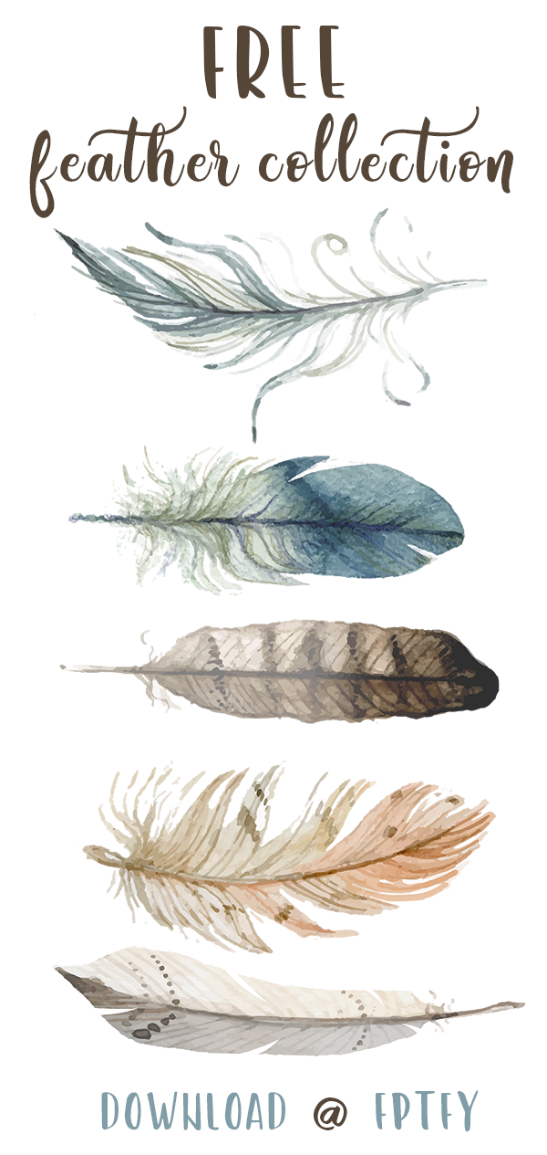 Free Hand drawn Feather Collection