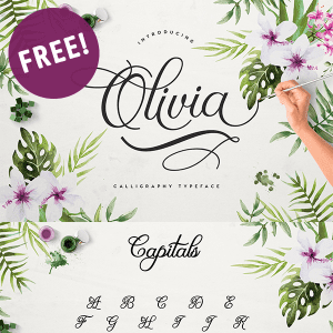 Free Olivia Script Font!