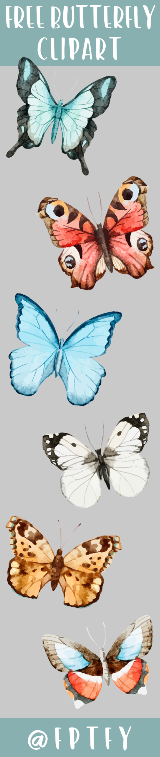 Free Butterfly Clipart-CU ok