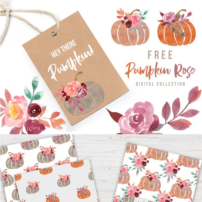 Free Pumpkin Rose Digital Collection