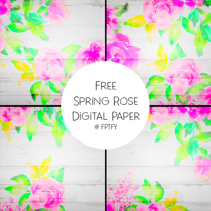 Free Spring Rose Digital Papers