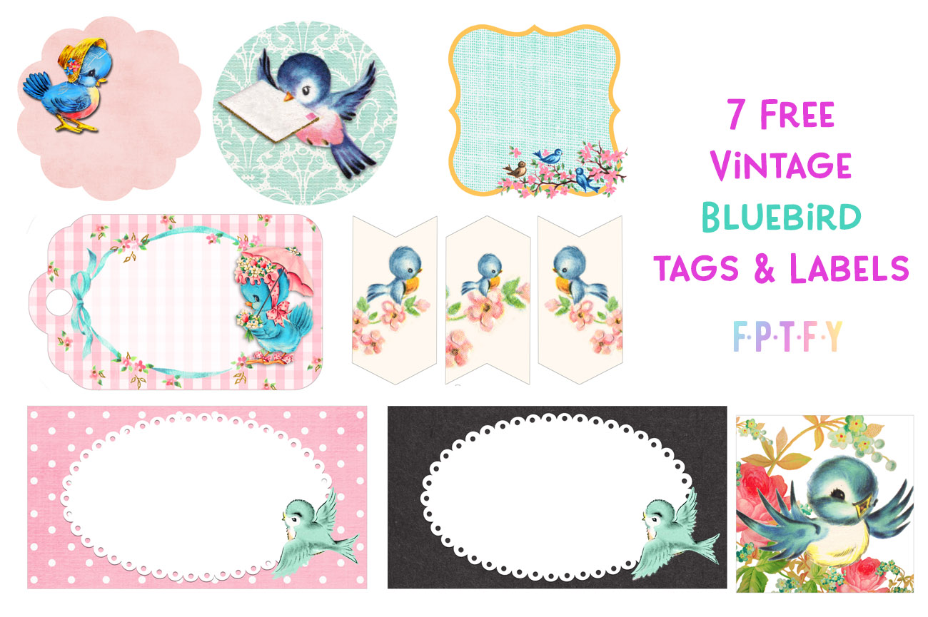 variety pack of vintage bluebird graphic tags and labels